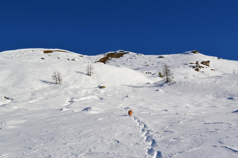 in discesa verso l'Alpe Sorbella