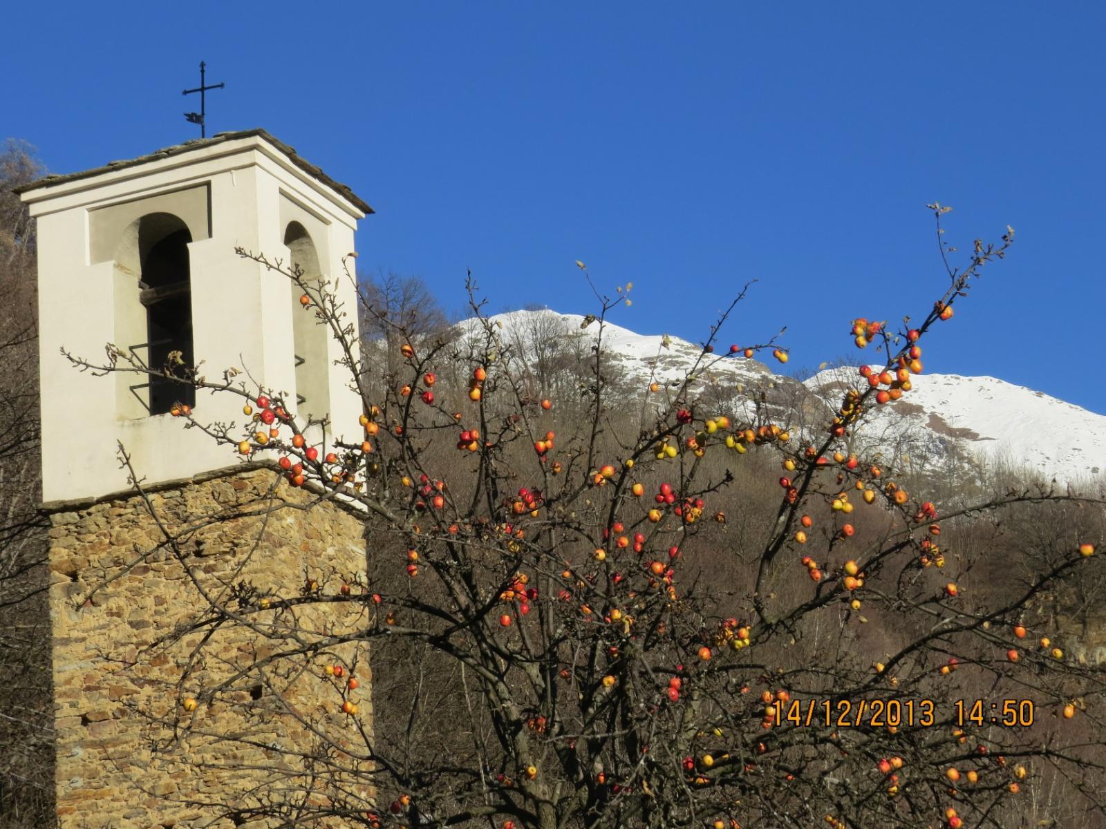 Mele farminej a San Domenico