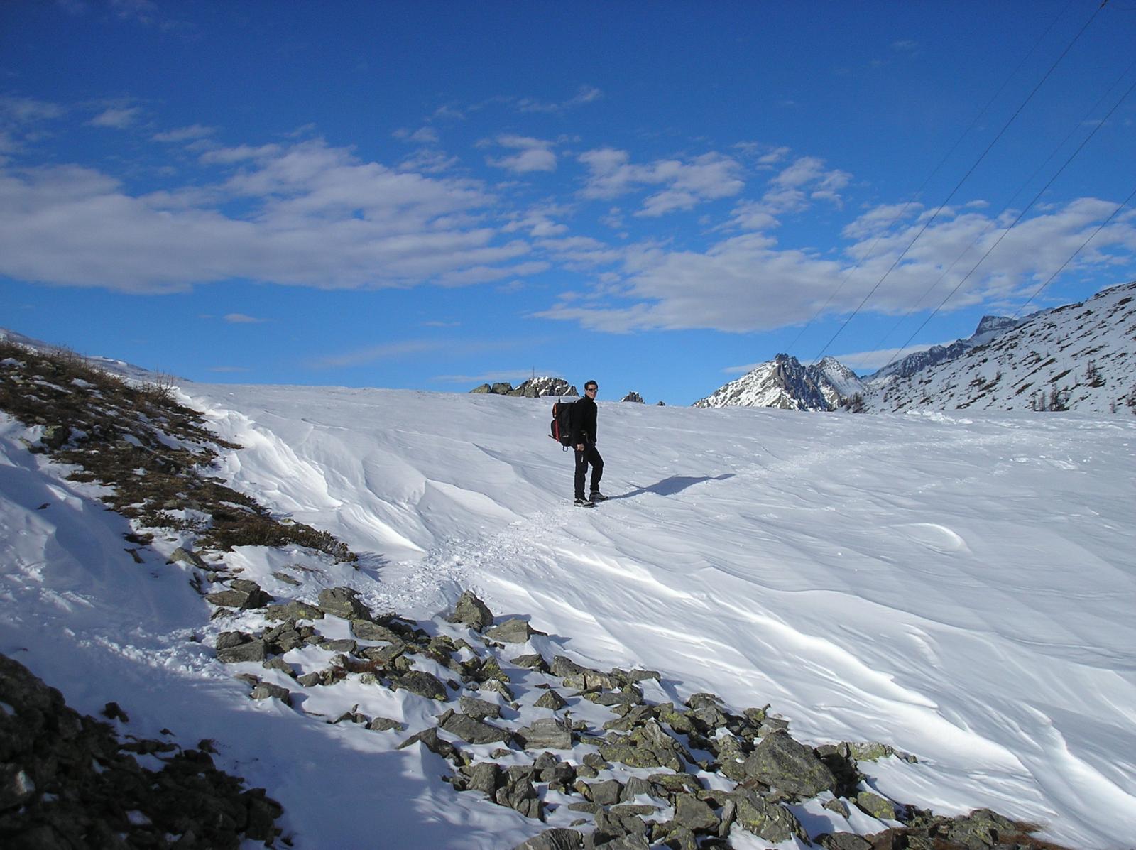 loris al confine italo svizzero