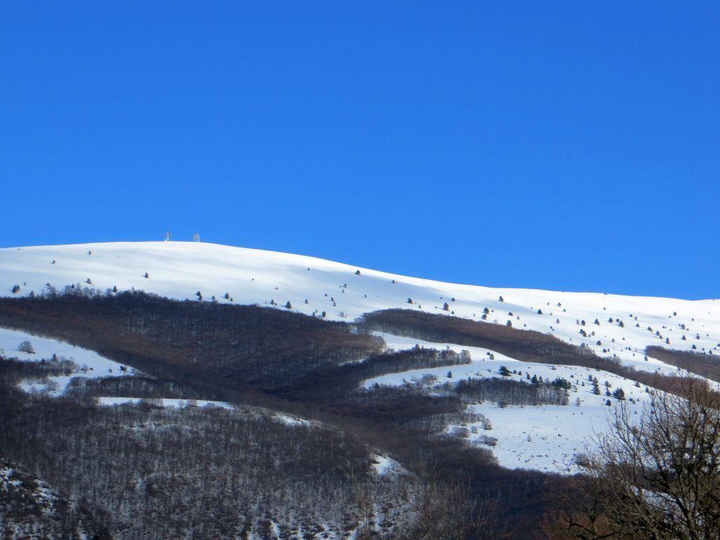 Pizzalto (Monte) dalla Fonte dei Monaci 2013-12-20