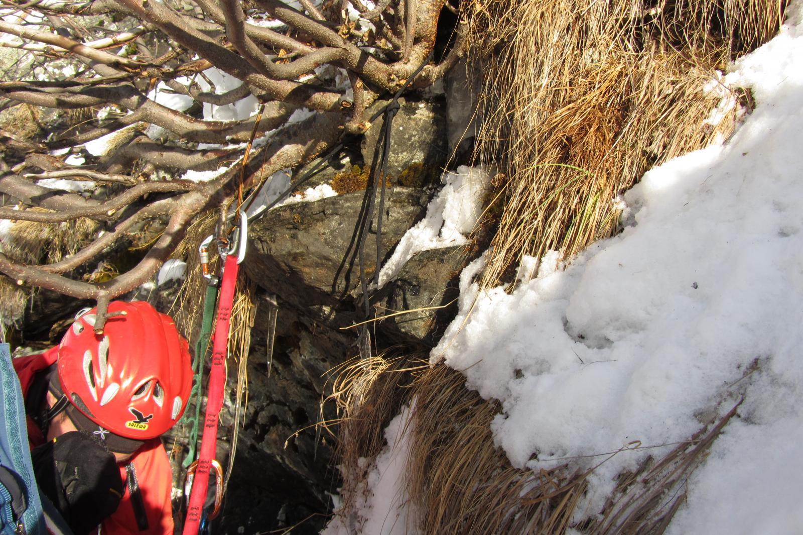 La sosta su cespuglio e il cordino nero di rinforzo