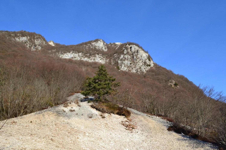 le pendici del Monte Misone