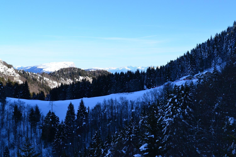 panorama da quota 1600 m: sulla destra la Malga di Tenno