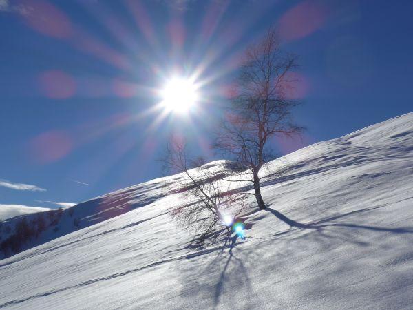 Scendendo dall'Alpe
