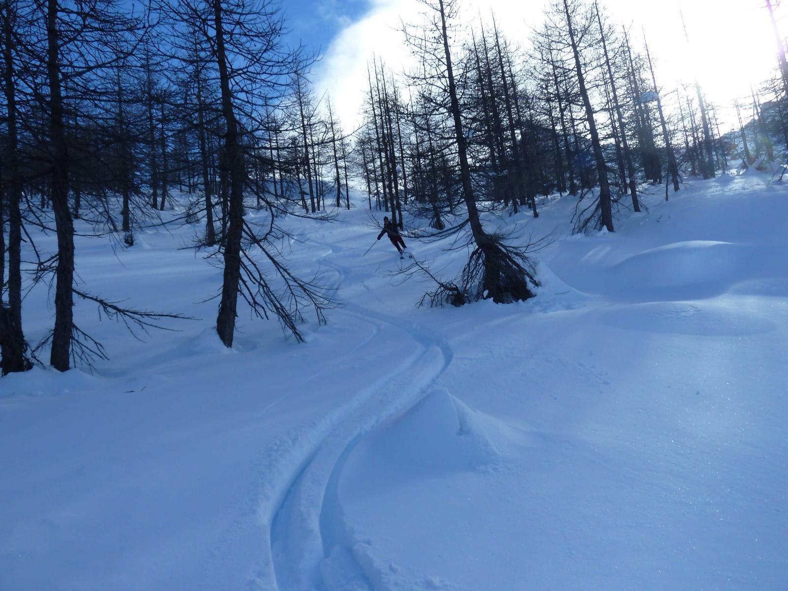 Neve polverosa