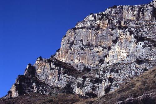 La Falesia: il settore descritto è la fascia centrale snella parte dx dove presenta una macchia gialla di roccia