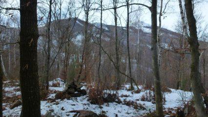 l'imboscato Monte Calmia