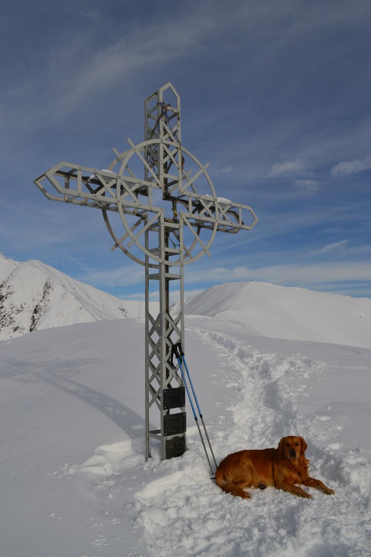 croce del Pian Cavallone (1564 m)