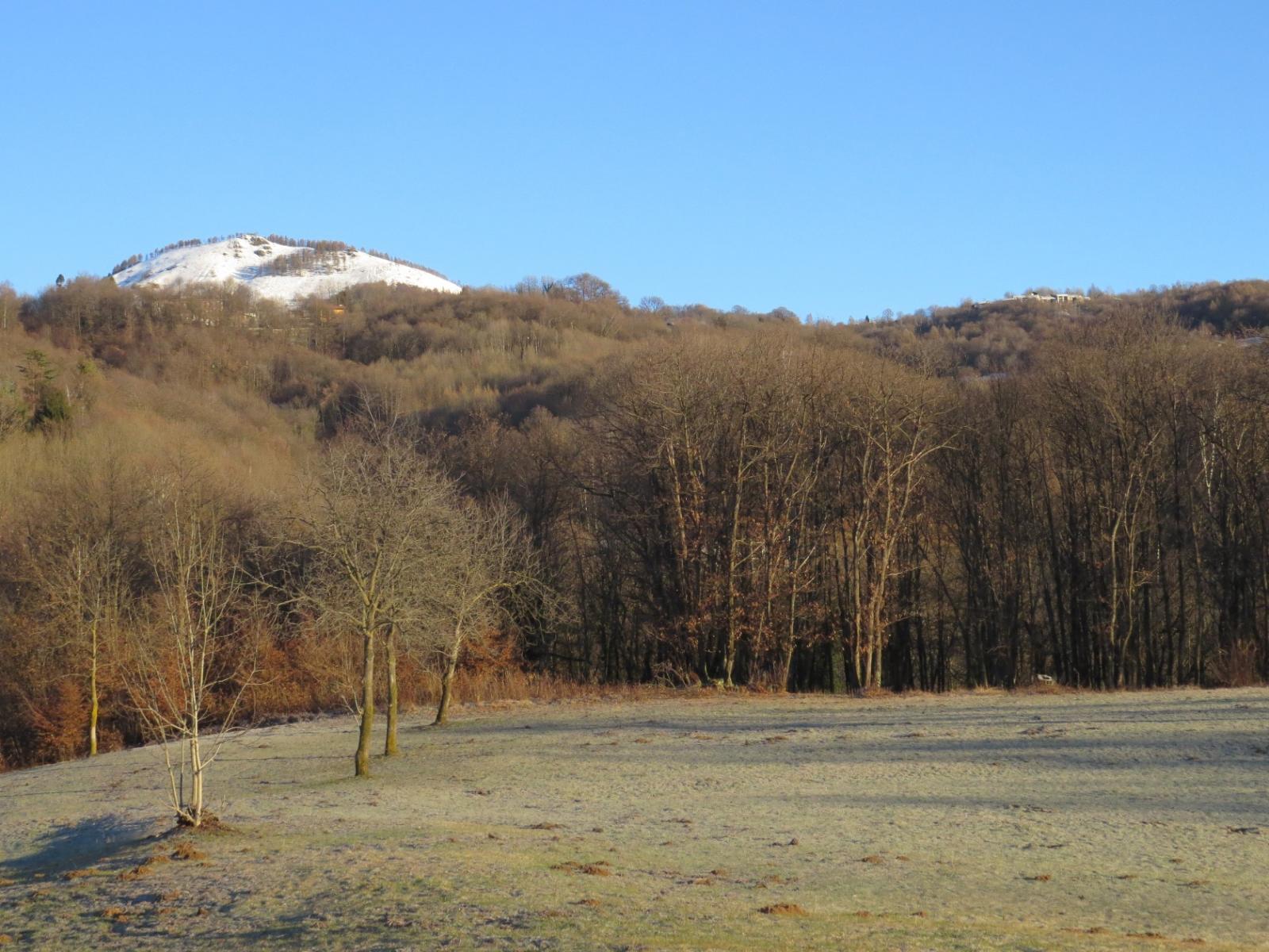 Salendo verso Villa Castelnuovo, in alto il Monte Calvo