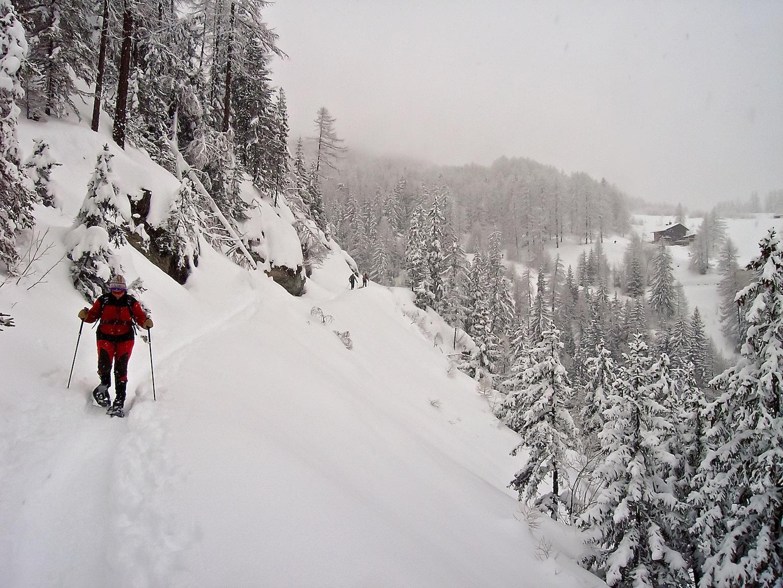 Lungo il breve raccordo che dal rif. Rey riporta alla partenza dello skilift de la Garde verso Chateau Beaulard
