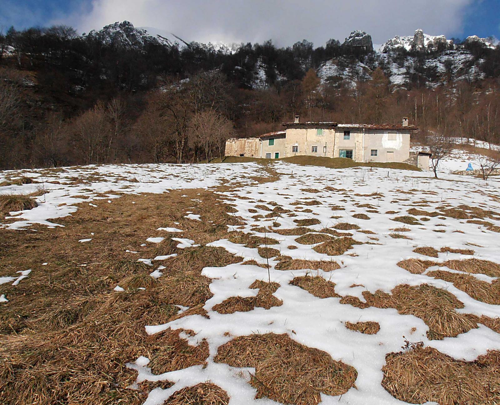 la prima neve Qt. 1200