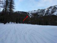 Intaglio nel bosco dove si trovano i tralicci del alta tensione da tenere come riferimento per raggiungere le Grange Tenou