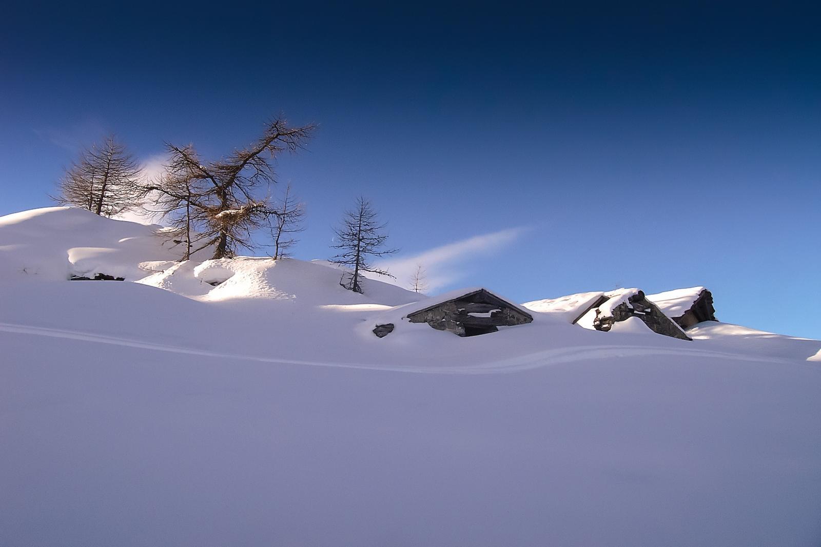 arrivo all'Alpe d'Arguel