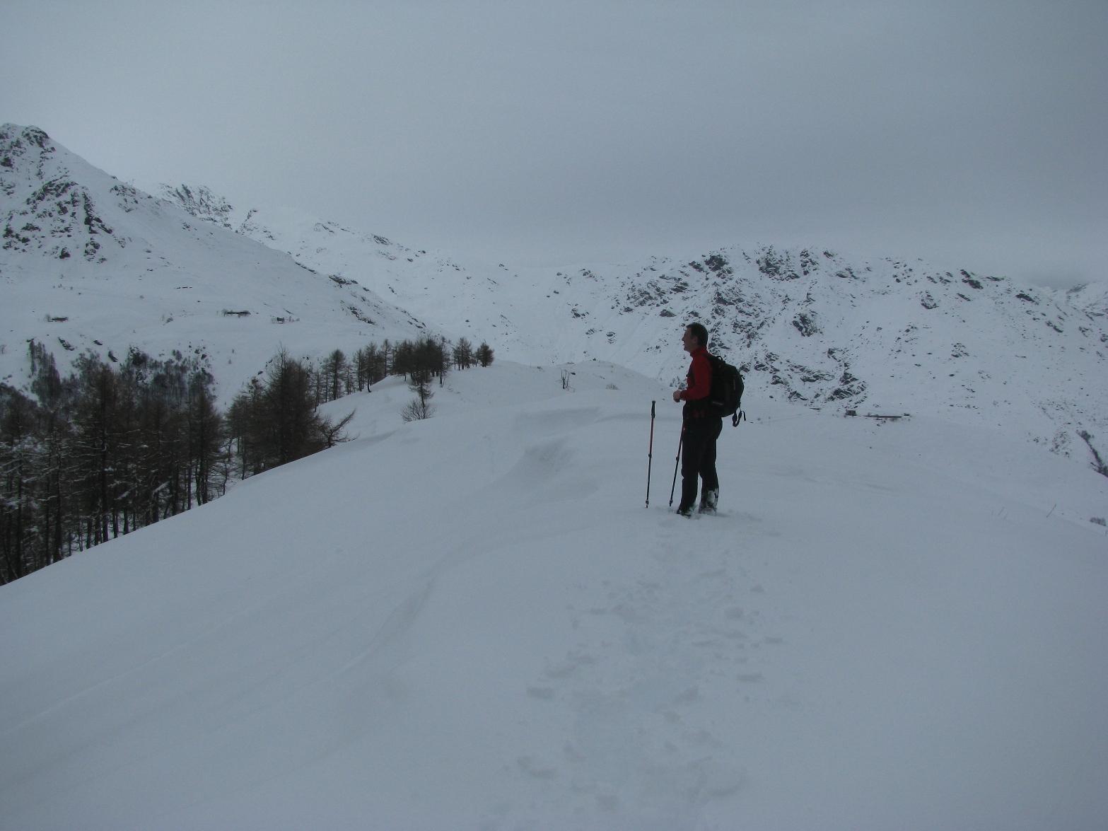 La cresta sommitale del Monte Calvo