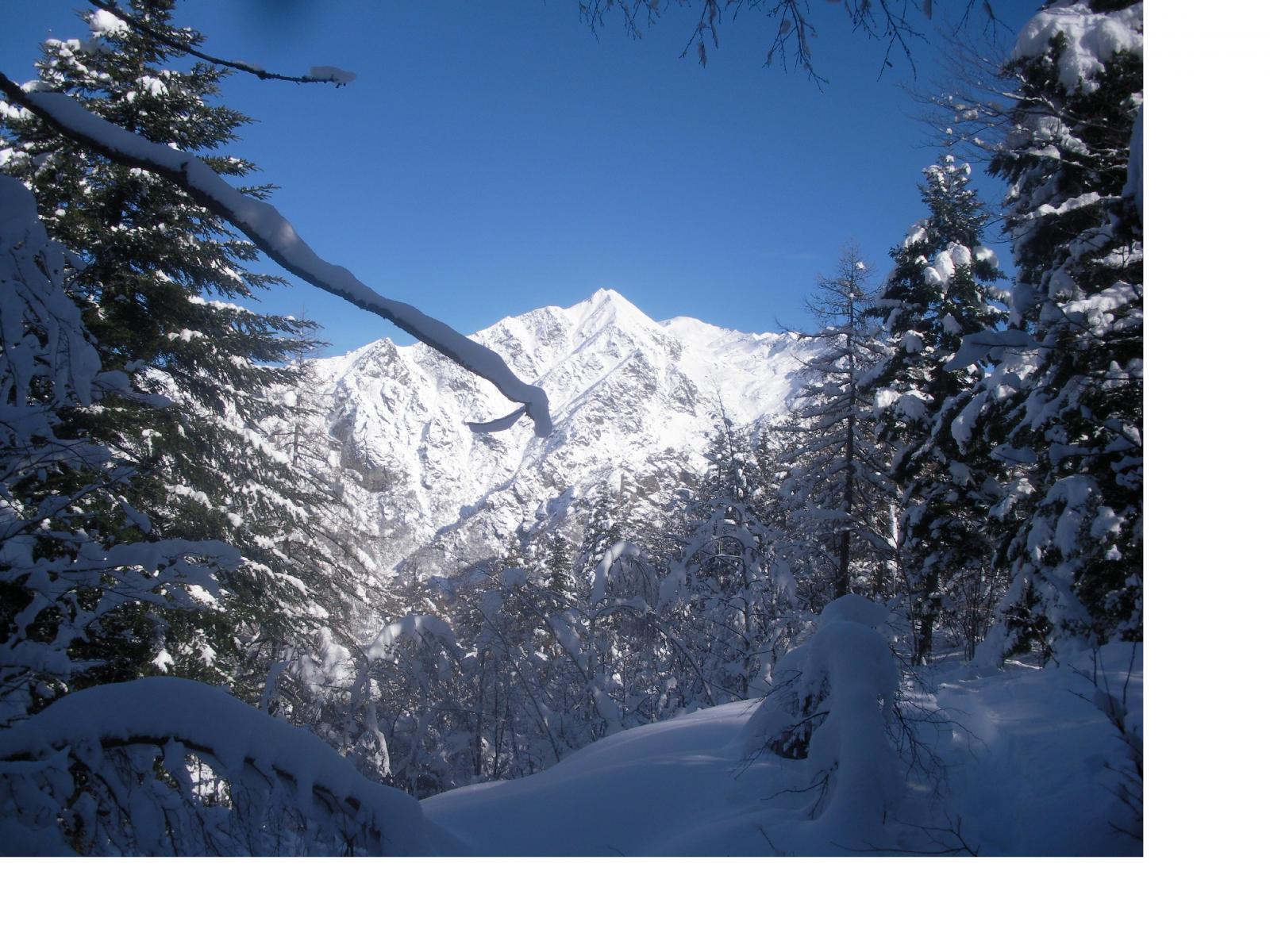 Il monte Canaussa..a pochi passi dal faticoso traguardo..