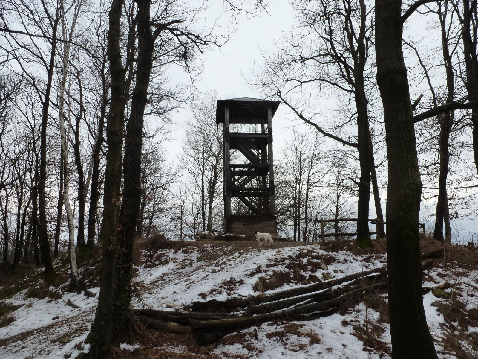 torre della bastia