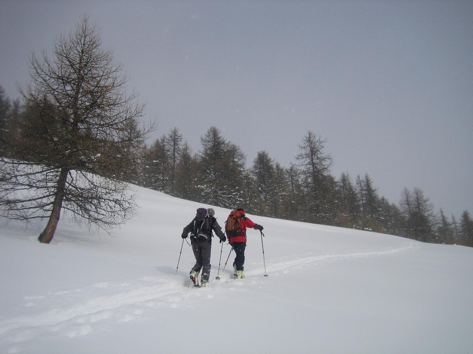 salita sotto una leggera nevicata