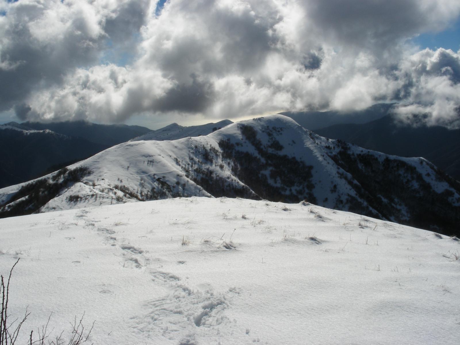 Grande (Monte) per Alpe di Baudo e monte Fenaira 2014-02-11
