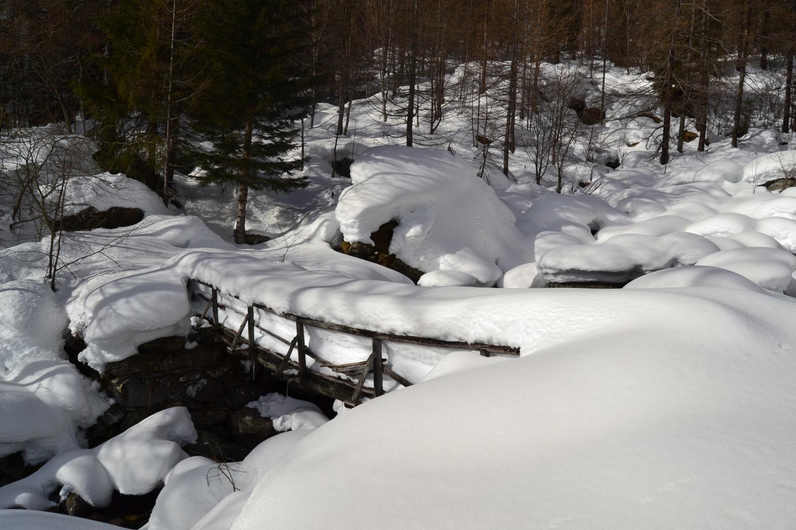 il ponticello per salire all'alpe
