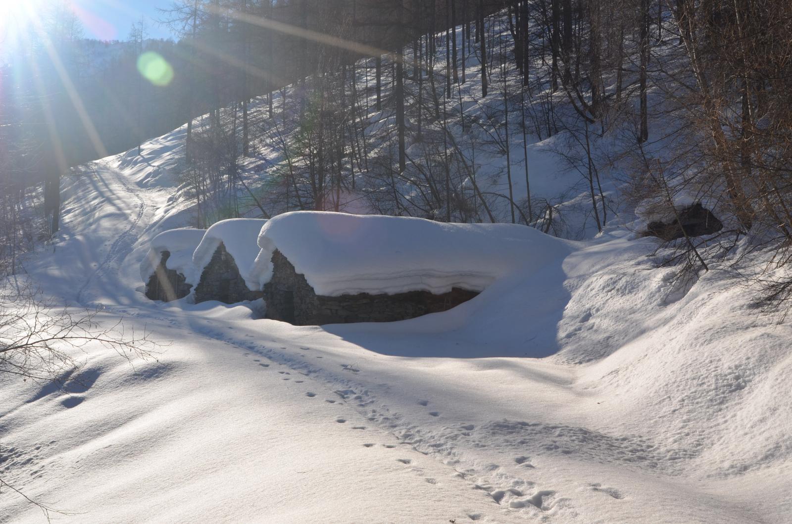 Alpe cuccetta, metri 1400