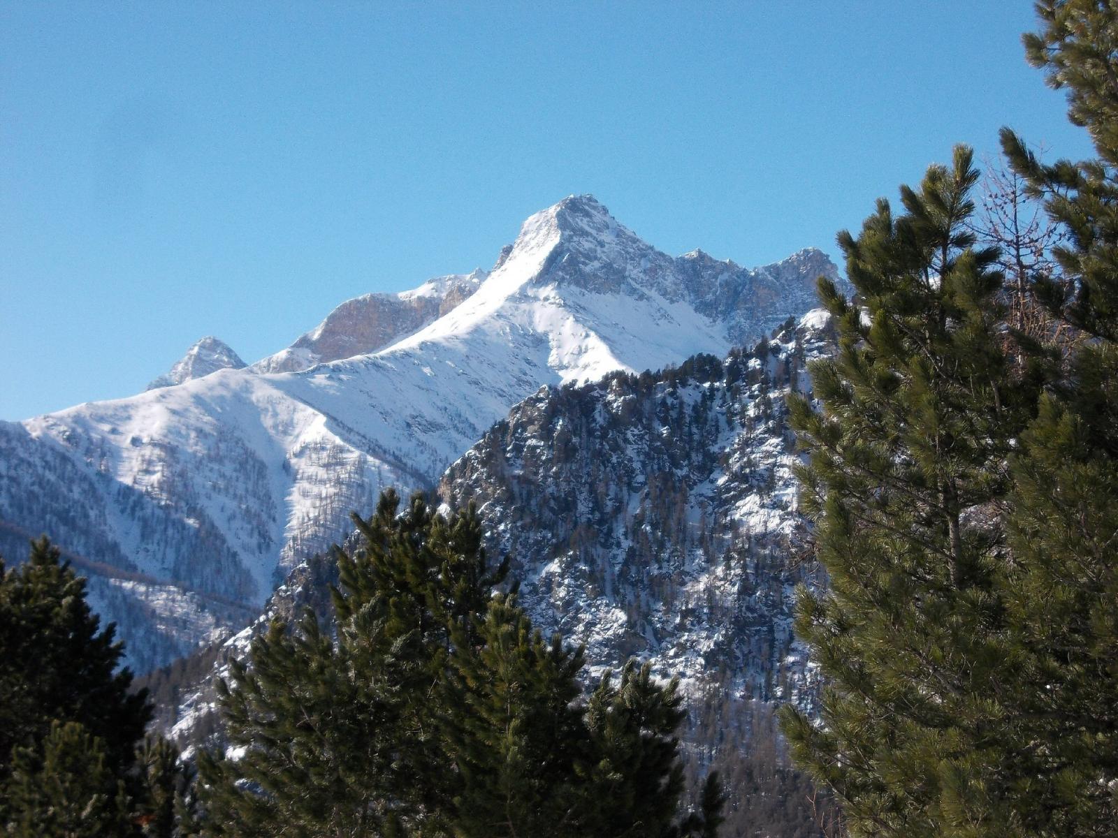 vista sul Pelvo d'Elva