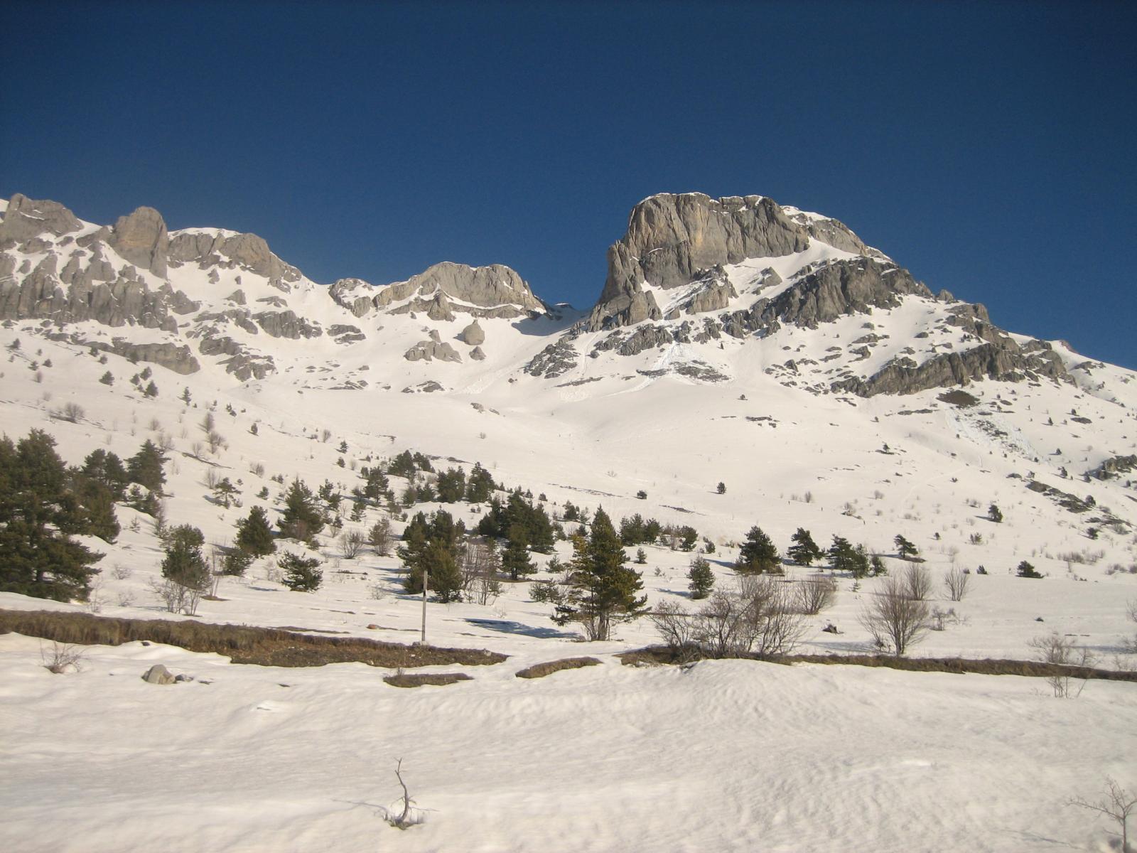 Mongioie (Monte) da Viozene 2014-02-23