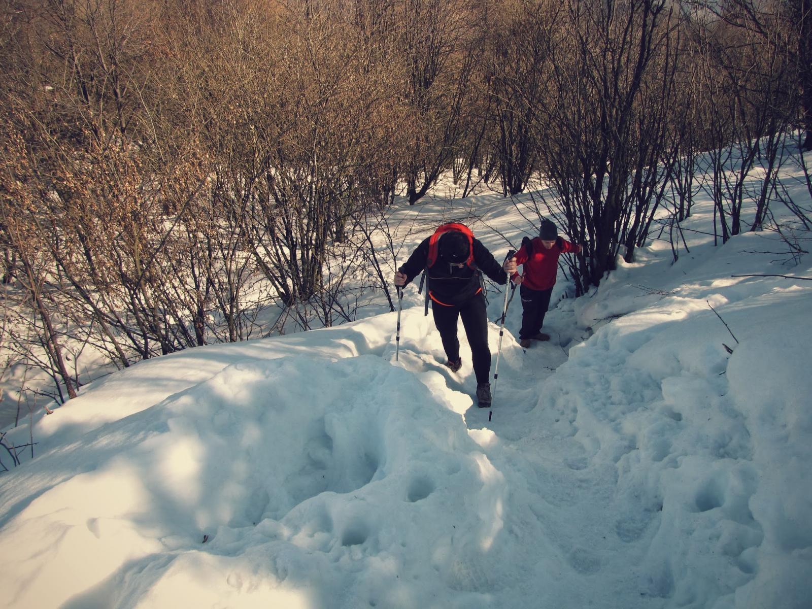 Salite nella neve (via Normale)