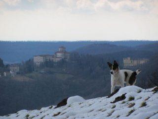 Sullo sfondo il Santuario di Graglia