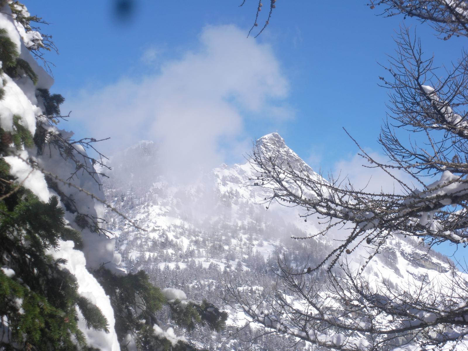 la cima Longhede dal M.Ander..