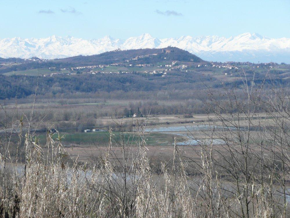 Verso collina di Camino. Sullo sfondo ci sono Bessanese, Ciamarella e Levanne