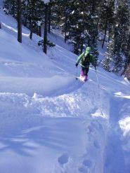 in sci nel bosco des Fontenilles