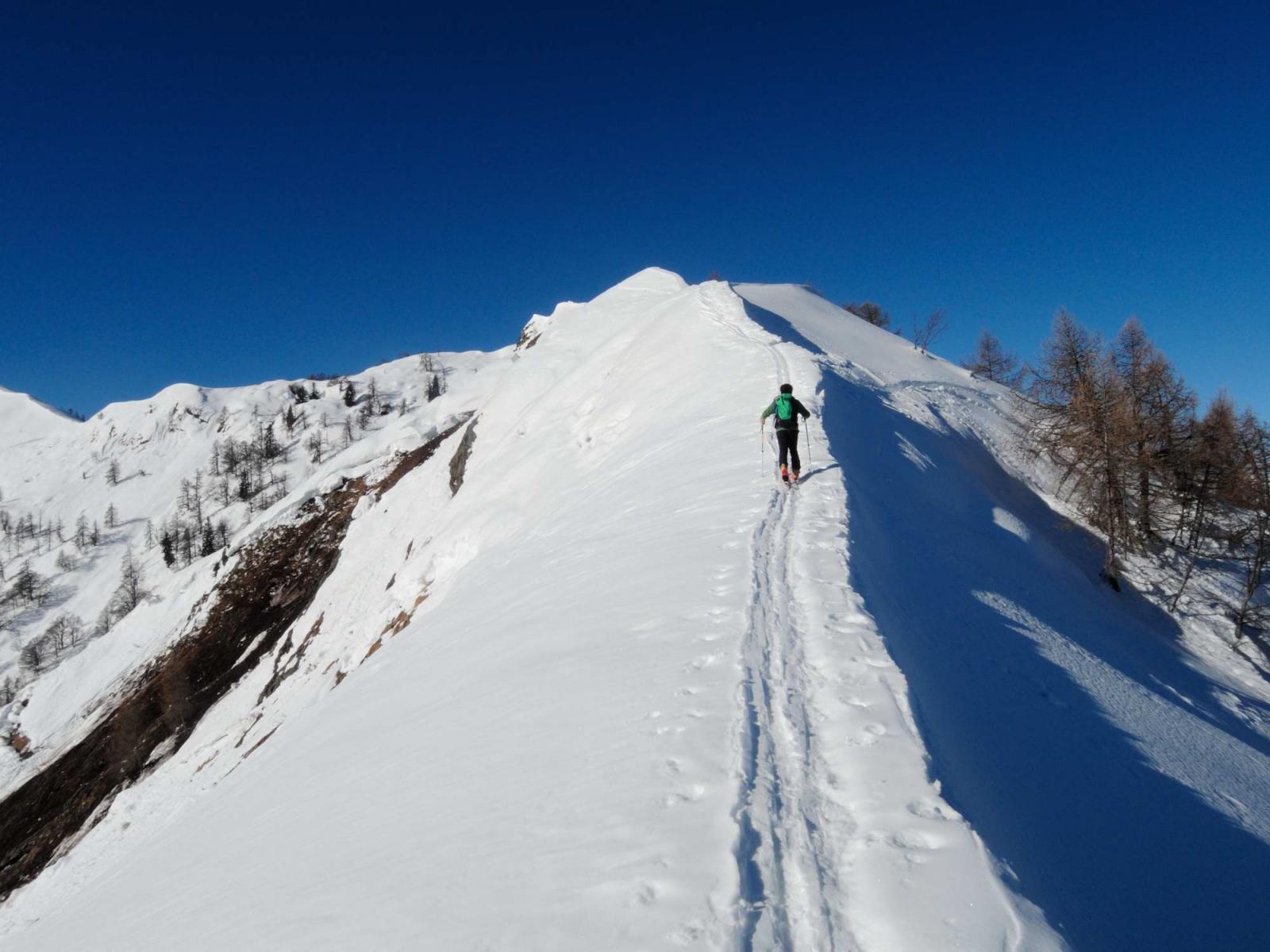 Cresta verso Picui