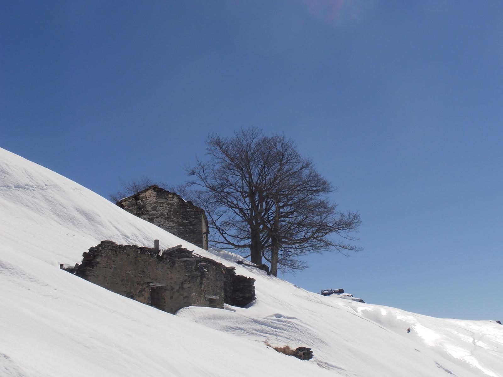 06 - alpeggi