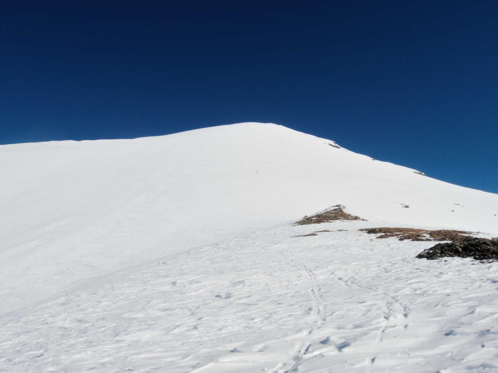 Pioltone (Pizzo) o Camoscellahorn da San Bernardo 2014-03-09