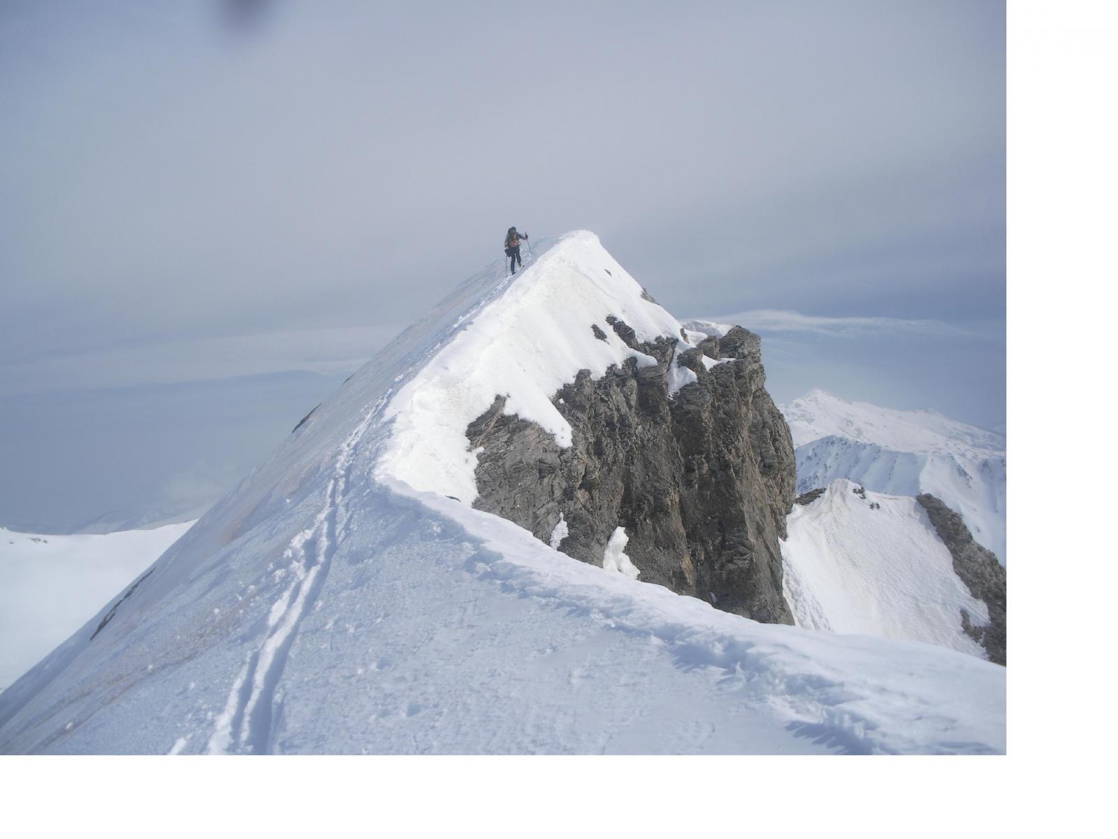l'ardito vertice della cima Revelli..