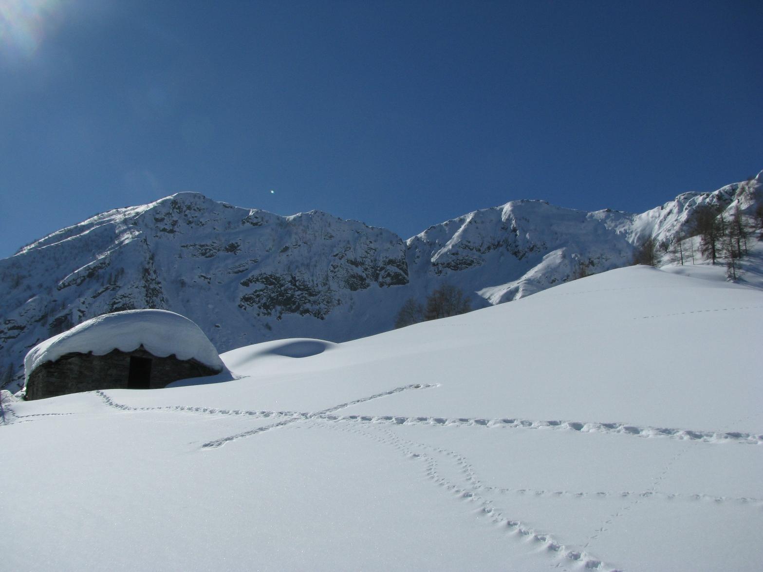 Arrivo all'Alpe Traverse