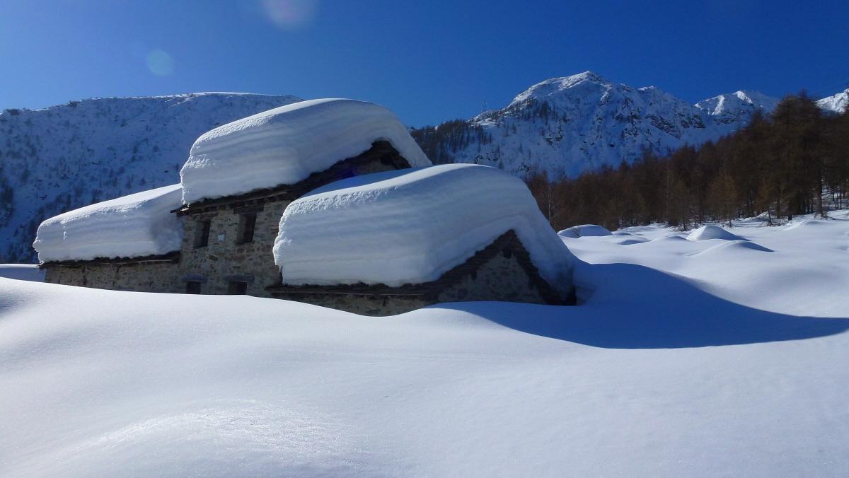 Alpe Volanza 1358m. a dx la Punta Palocco o Cima della Via