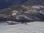 vista sul versante Frassinetto