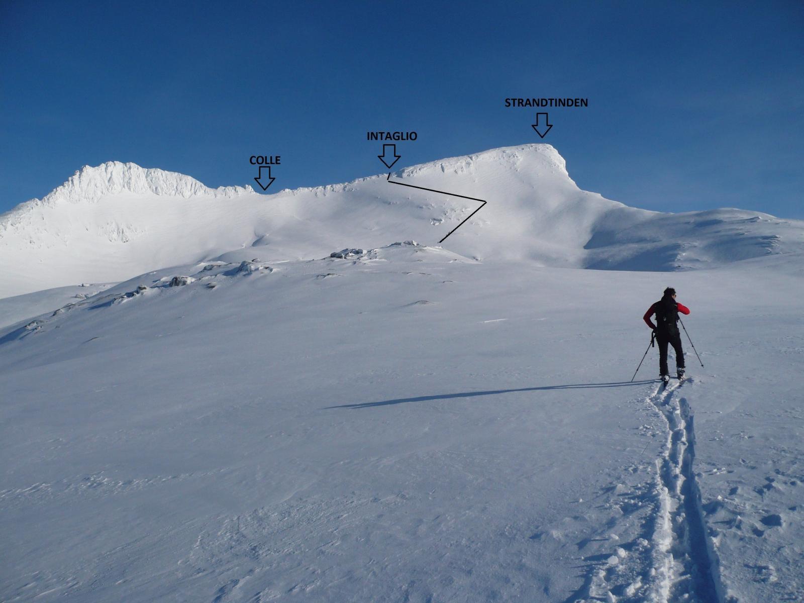 la vetta da quota 700 m circa