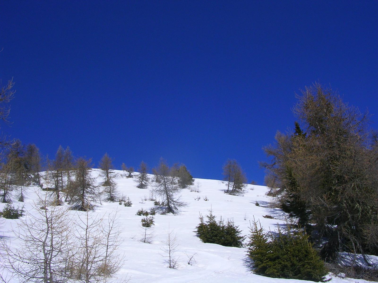 qui bella neve primaverile