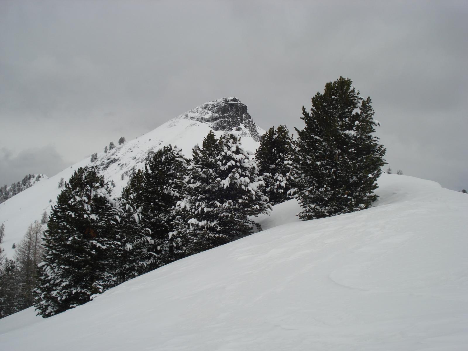 il monte Courbion visto dal colle Begino