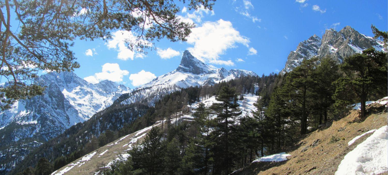 Monte Avic