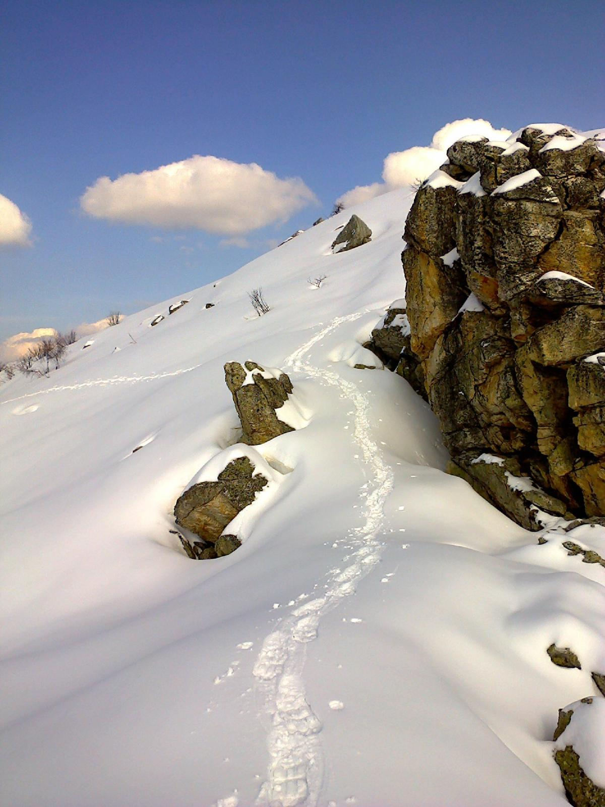 Dente (Gruppo del) da Miroglio per il Vallone del Rio Biarosso 2014-03-28