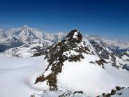 Doravidi e sullo sfondo Monte Bianco
