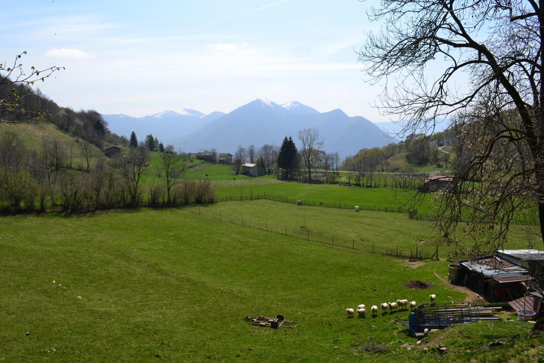 vista sui Monti di Erno salendo alla Forcoletta