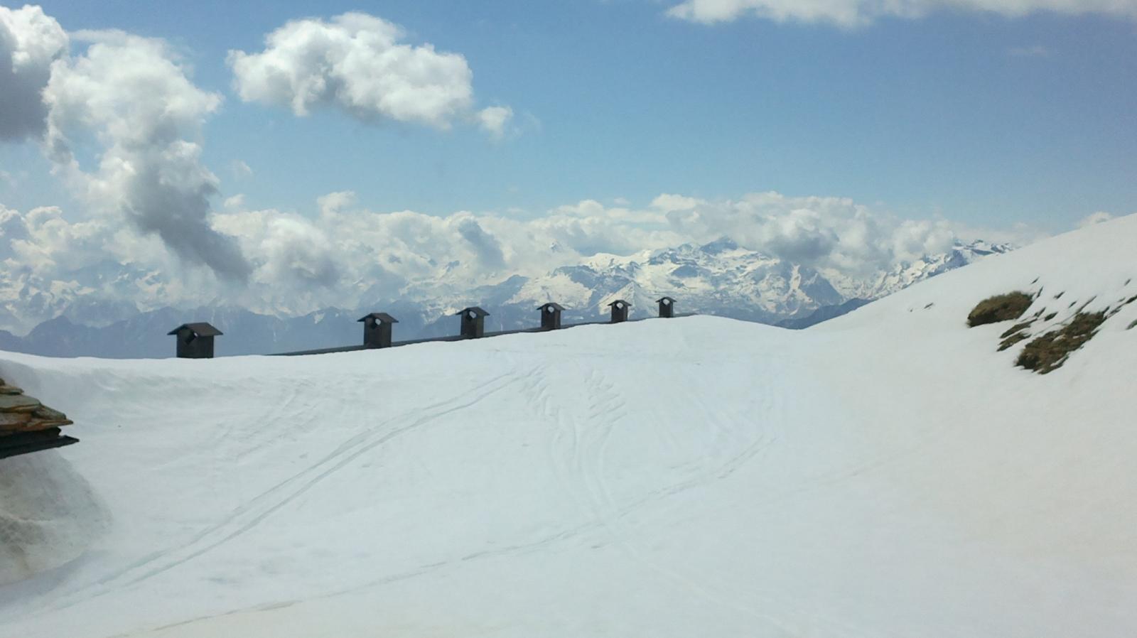 ...Alpe Palasinas...