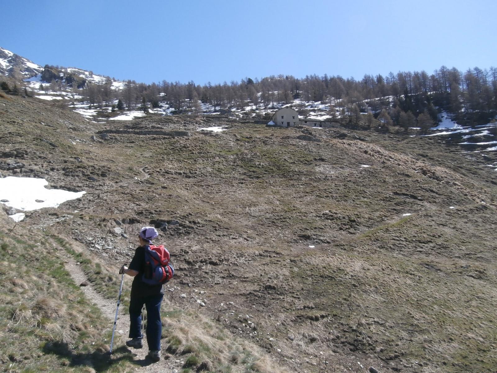 l'arrivo alle baite  inferiori in totale assenza di neve...
