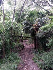 discesa sentiero 27