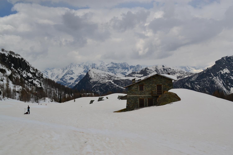 di ritorno all'Alpe Campascio