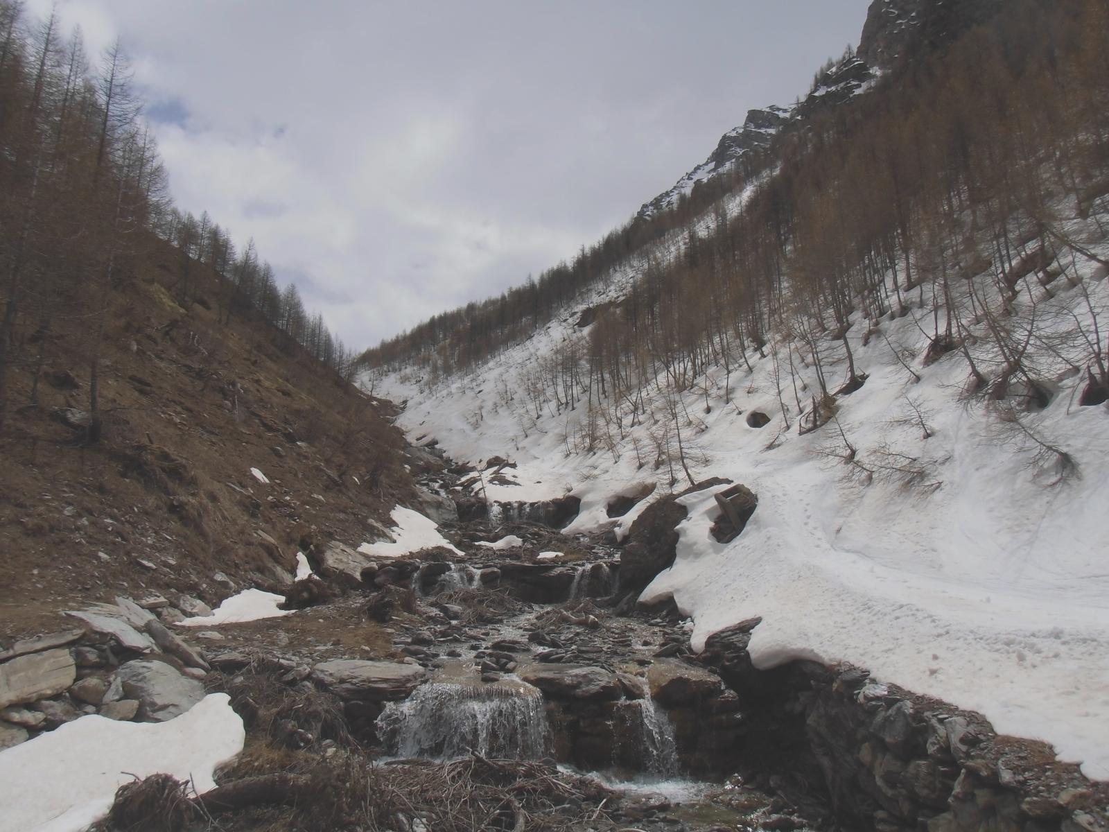 No neve, chi preferisce: dal sentiero estivo 300 mt lineari x trovarla